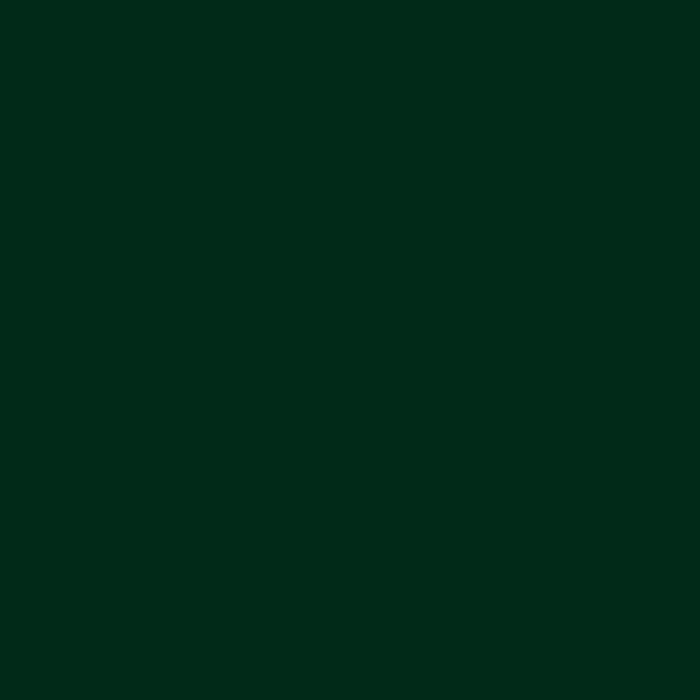 Fir Green RAL6009