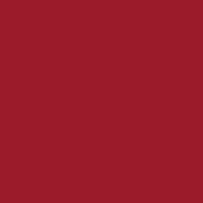 Ruby Red RAL3003